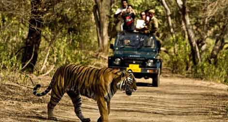 Triangle with Ranthambore Tour,Golden Triangle & Ranthambore Wildlife Travel Tours